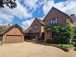 Thumbnail for sale in Gosport Road, East Tisted, Alton