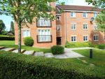 Thumbnail to rent in Eothen Close, Caterham