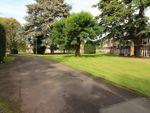 Thumbnail to rent in Vernon Close, Leamington Spa