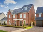 "Thumbnail to rent in ""Helmsley"" at Texan Close, Warton, Preston"