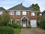 Thumbnail for sale in Hawthorn Close, Colden Common, Winchester