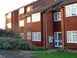 Thumbnail to rent in St. Peters Close, Daventry