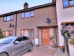Thumbnail for sale in Traill Terrace, Montrose