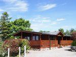 Thumbnail to rent in Kippford, Dalbeattie