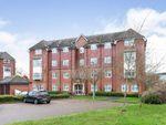Thumbnail to rent in Aspen House, Mapledurwell, Basingstoke
