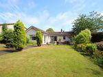 Thumbnail to rent in Bennochy Avenue, Kirkcaldy, Fife
