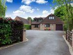 Thumbnail for sale in Billingshurst Road, Broadbridge Heath, Horsham
