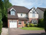 Thumbnail for sale in Park View Road, Sutton Coldfield