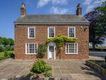 Thumbnail to rent in Hallgate, Moulton, Spalding