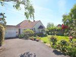 Thumbnail to rent in Belmore Road, Lymington, Hampshire