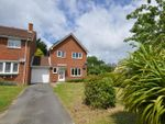 Thumbnail for sale in Ingrams Way, Hailsham