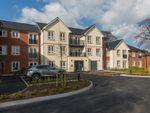 Thumbnail to rent in Elloughton Road, Elloughton, Brough