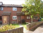 Thumbnail to rent in Ashmead, Yeovil, Somerset