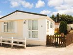 Thumbnail to rent in Wiremead Lane, East Cholderton, Andover