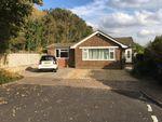 Thumbnail to rent in Tottington Way, Shoreham-By-Sea