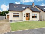 Thumbnail to rent in Castle Meadow Drive, Cloughey