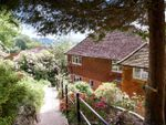 Thumbnail for sale in The Avenue, Haslemere, Surrey