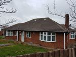 Thumbnail to rent in Beech Grove, Abington, Northampton