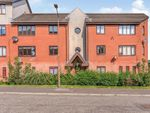 Thumbnail for sale in Bairns Ford Court, Falkirk