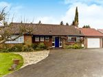 Thumbnail to rent in Church Way, Sanderstead, South Croydon