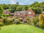 Thumbnail to rent in Felday Glade, Holmbury St. Mary, Dorking
