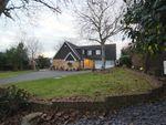 Thumbnail to rent in Farleigh Lane, Maidstone