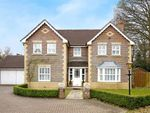 Thumbnail for sale in Chaffinch Close, Horsham, West Sussex