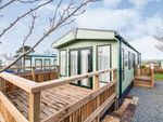 Thumbnail to rent in Globe Vale Holiday Park, Radnor, Redruth