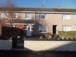 Thumbnail to rent in Briar Dene, Sketty, Swansea