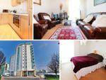 Thumbnail to rent in Havannah Street, Cardiff