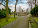 Thumbnail for sale in 9 Whin Hill Road, Bessacarr, Doncaster, South Yorkshire
