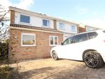 Thumbnail to rent in Falconers Green, Burbage, Leicestershire