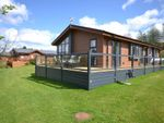 Thumbnail for sale in Show Lodge Plot 21, Riverview Holiday Park Mangerton Newcastleton
