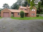Thumbnail to rent in Church Road, Christchurch, Wisbech