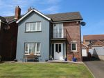 Thumbnail for sale in Trailcock Road, Carrickfergus