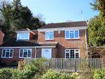 Thumbnail for sale in Chiselbury Grove, Harnham, Salisbury