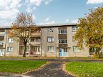 Thumbnail for sale in Bowhouse Road, Grangemouth