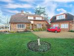 Thumbnail for sale in Carlby Road, Greatford, Stamford