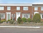 Thumbnail for sale in Thorncliff Close, Torquay