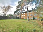 Thumbnail to rent in Devonshire Avenue, Woking, Surrey