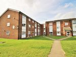 Thumbnail to rent in Lupin Drive, Springfield, Chelmsford