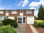 Thumbnail for sale in Hilda Vale Road, Farnborough, Kent