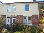 Thumbnail to rent in Armstrong Terrace, Morpeth