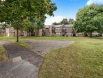 Thumbnail to rent in Robin Hood Close, Farnborough