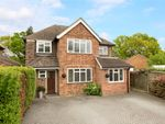 Thumbnail for sale in Hillford Place, Redhill, Surrey