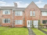 Thumbnail to rent in Viola Terrace, Whickham, Newcastle Upon Tyne