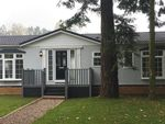 Thumbnail to rent in Stourport Road, Bromyard, Herefordshire