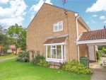 Thumbnail to rent in Roe Green, Eaton Socon, St Neots, Cambridgeshire
