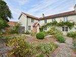 Thumbnail to rent in Darsham Road, Westleton, Saxmundham
