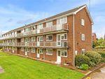 Thumbnail to rent in Hughenden Road, St Albans, Hertfordshire